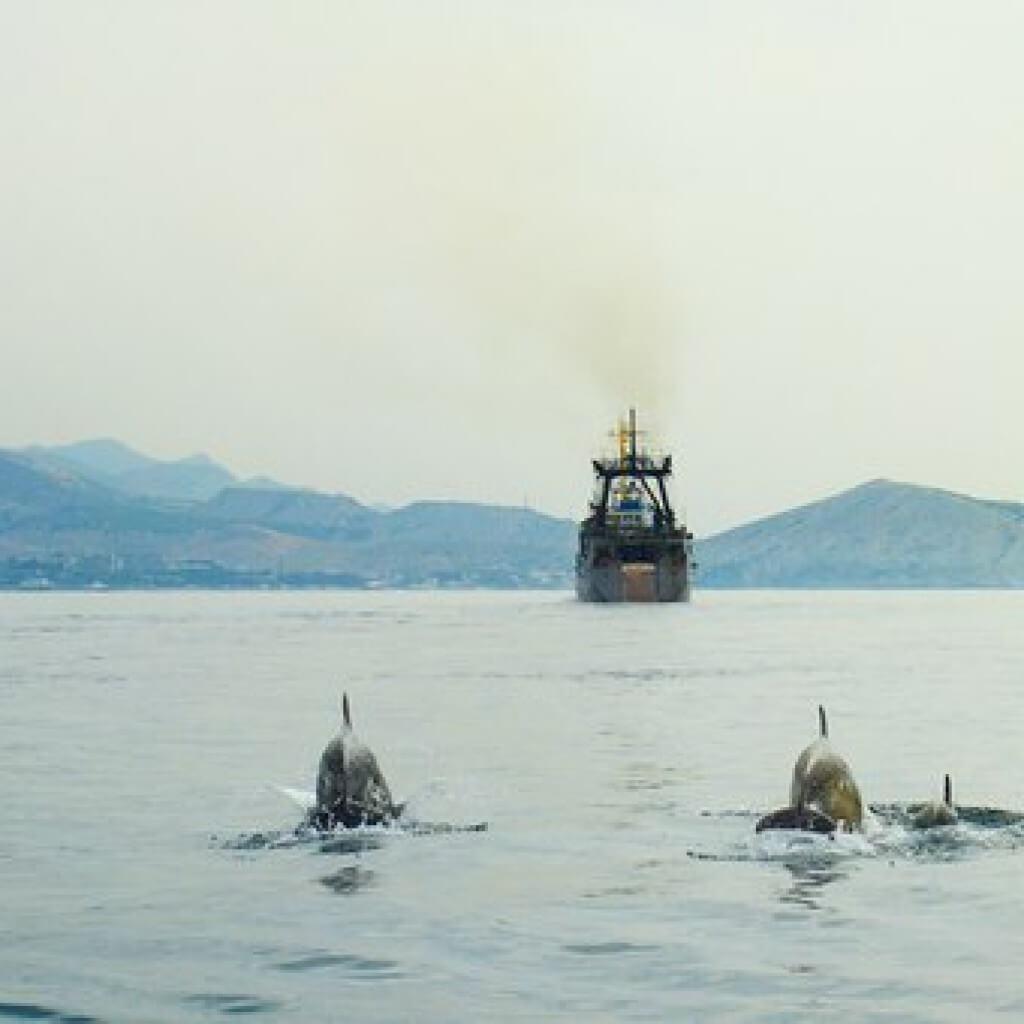 Морские прогулки в Судаке