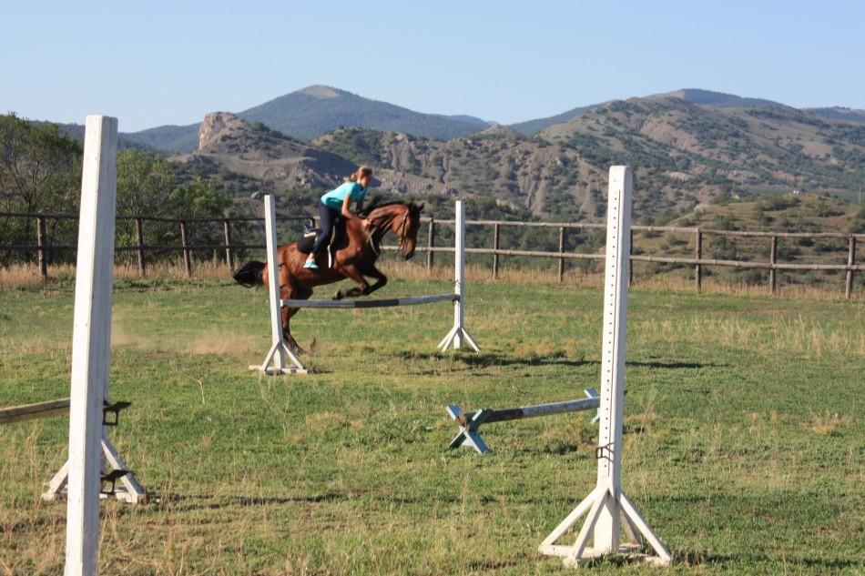 прокат лошадей в Долине Роз